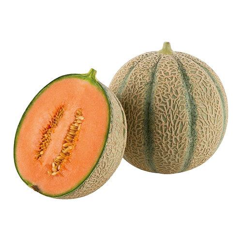 Zuckermelone (STK)