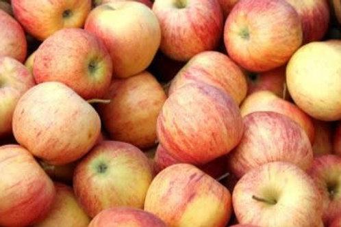 Gala Apfel (1Kg)