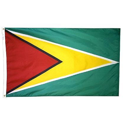 "Guyana Flag ""3x5"""