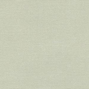 R-122 Seashell.jpg