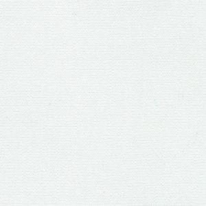 R-099 White.jpg