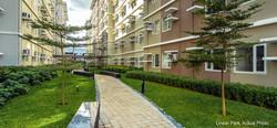 Trees-Linear-Park