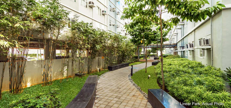 Trees-Linear-Park04