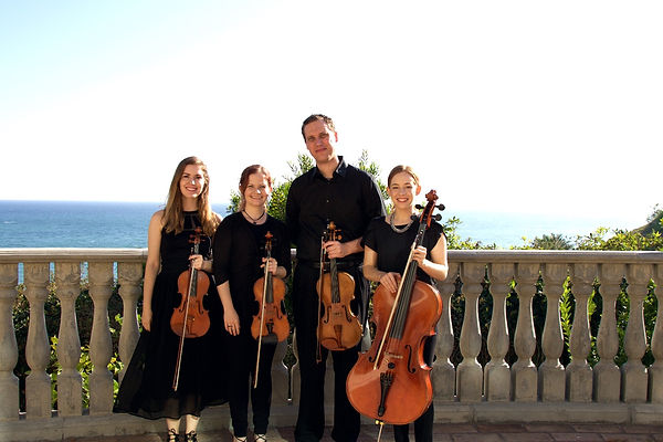 The Looking Glass String Quartet