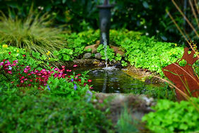Fontaine ruisseau irrigtion brumisateur