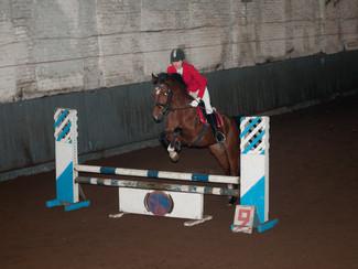 Открытое первенство центра спортивной подготовки по конному спорту Новосибирской области.