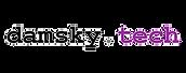 damsky_tech_logo.png