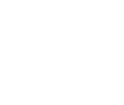 butterfly logo- white.png