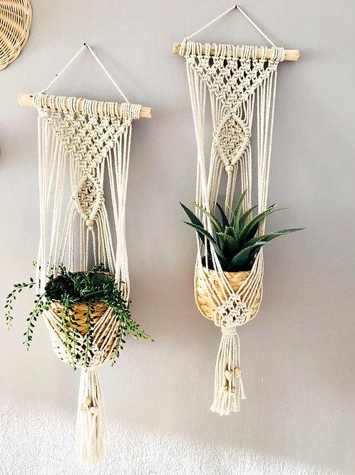 Macramé, plant hanger, plant hugger, plant holder