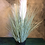 Thumbnail: Pretty Artificial Pampas Grass