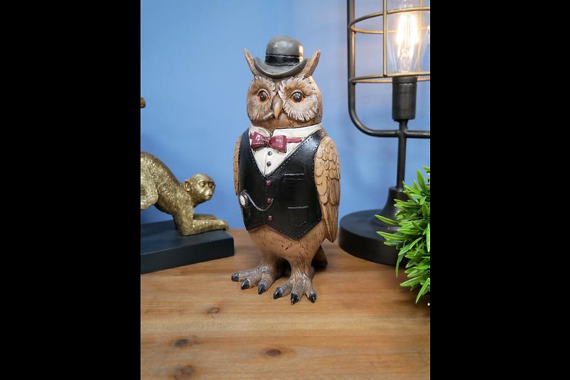 Gentlemen Owl
