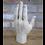 Thumbnail: Hand