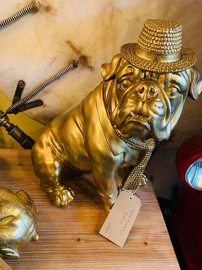 Large Gold Bulldog Wearing a Hat