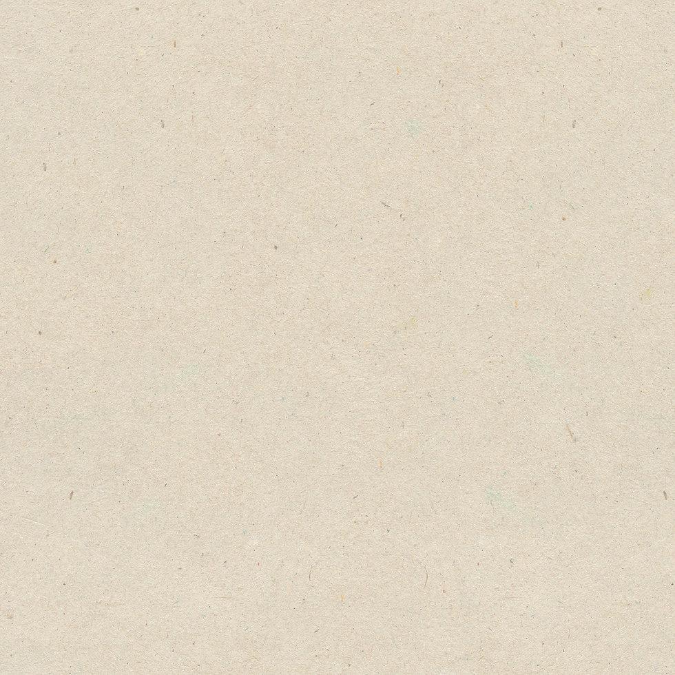 cardboard-paper-texture-5_edited.jpg