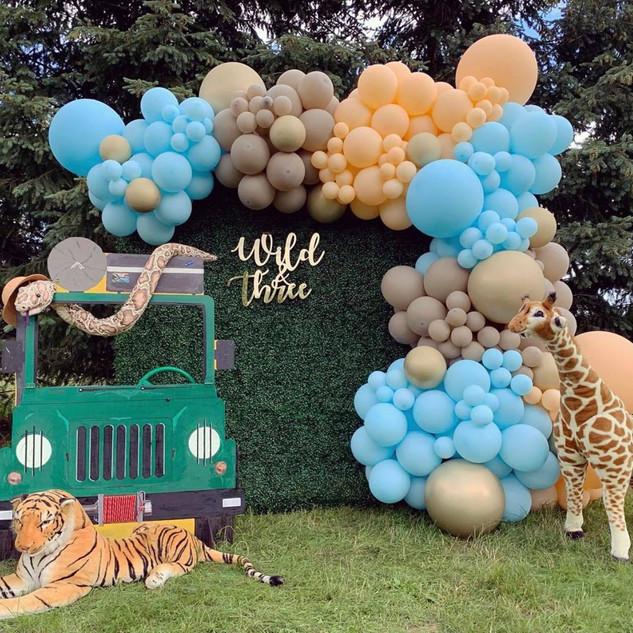 Safari Birthday decoration