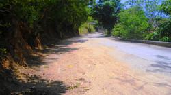 a pie de calle pavimentada