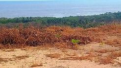 Venta de Lotes campiranos con vista al mar junto a Huatulco / FOR SELL COUNTRY LOTS WITH OCEANVIEW near to Huatulco.