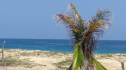 Se vende terreno frente al mar en Salchi / FOR SALE LAND OCEAN FRONT IN SALCHI BEACH.