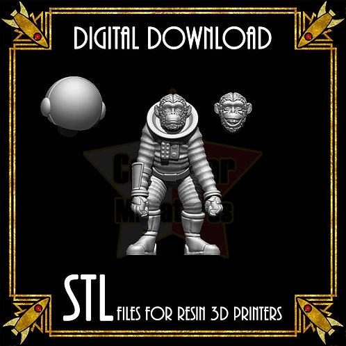 Astro Chimp (Digital)