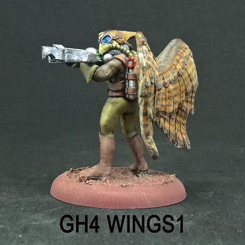 Ground Hawk 4 (Resin)