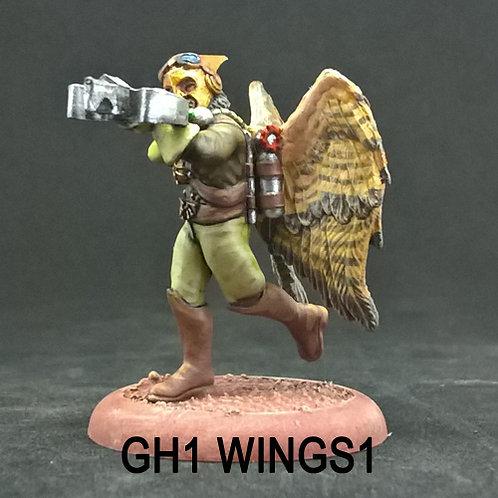Ground Hawk 1 (Resin)
