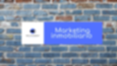 consultor de marketing inobiliario.png