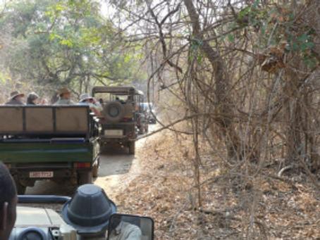 Sept. 26 – Return to Malawi