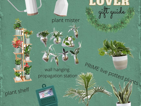 Plant Lover Gift Guide