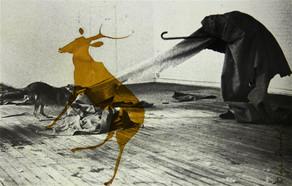 BEUYS 2021. 100 Years of Joseph Beuys (May 12, 1921-January 23,1986)