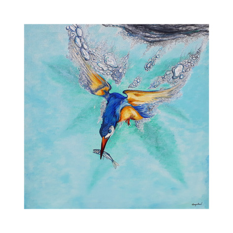 Kingfisher a.jpg