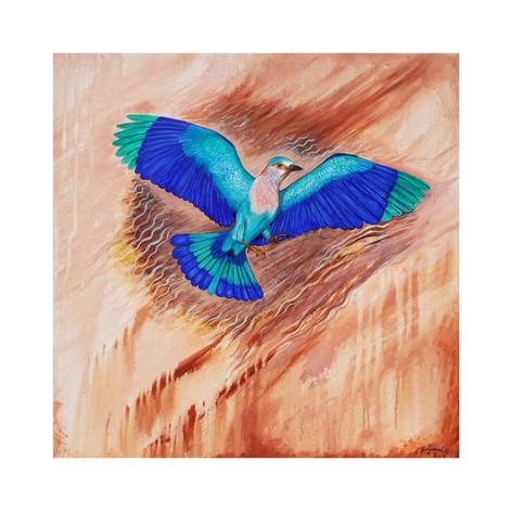 Indian Rollar Bird a.jpg