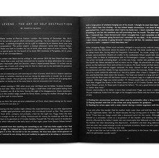 The Void Ratio by Shane Levene & Karolina Urbaniak