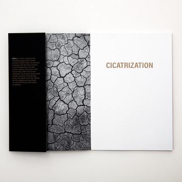 Cicatrization