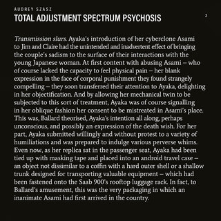 Audreys Szasz - Plan for the Abduction o