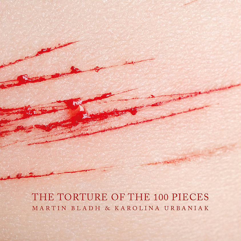 Torture cover.jpg