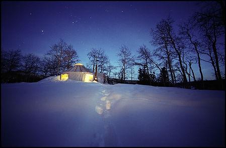 Yurt Stars fk1.jpg