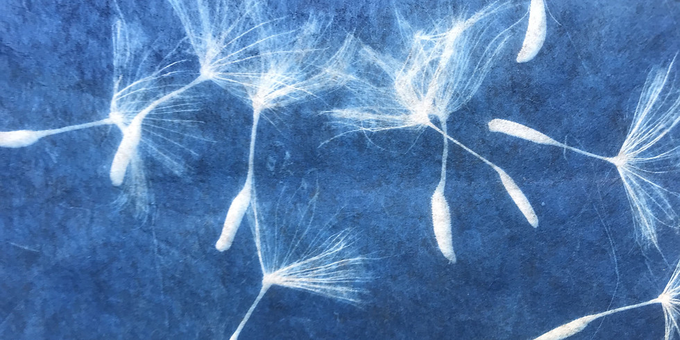 Cyanotypes, Sun Prints and  Anna Atkins: Early photography ONLINE Workshop (1)