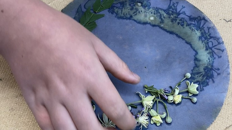 Half-term Activities: Sun Printing & Cyanotypes