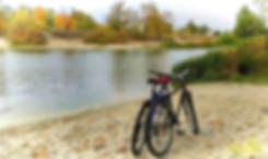 прокатные велосипеды-фото 1
