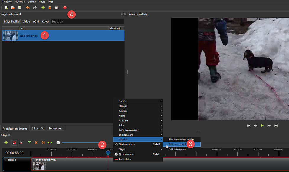 Videoeditointi.jpg