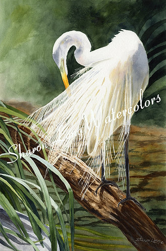 """Elegance in White"" Original Watercolor Painting"