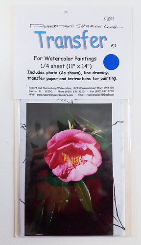 Pink Camellia Flower Painting Instruction Kit #6A Env 70