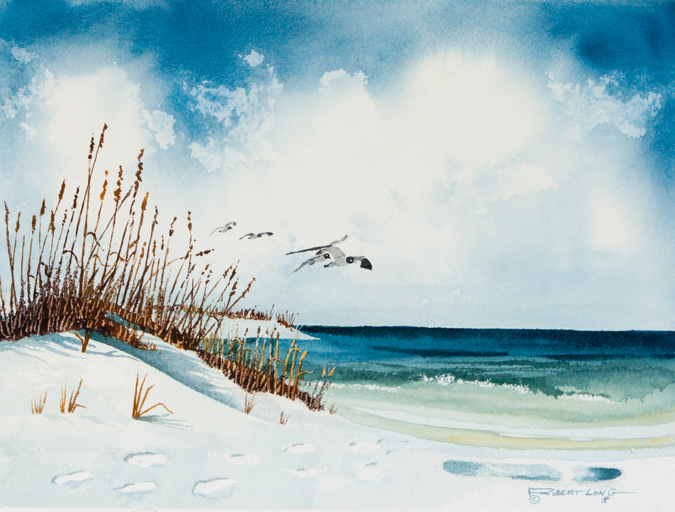 """In Flight"" Beach Scene"
