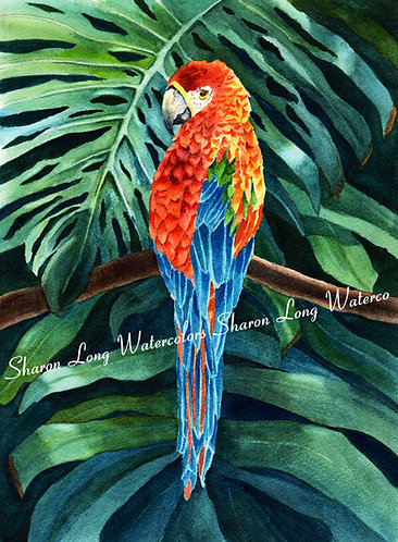 """Rainbow Forest"" Original Watercolor Scarlet Macaw Bird"