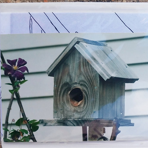 Birdhouse Painting Instruction Kit