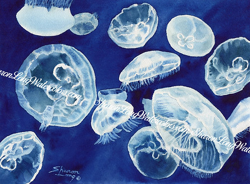 """Moon Struck"" Moon Jellies Watercolor Painting Original"