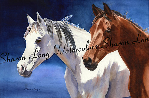 """""""Friends"""" Matted Print 16x20 Horses"""