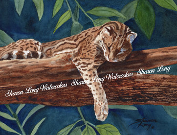 """""""Lazy Afternoon""""  Watercolor Print"""