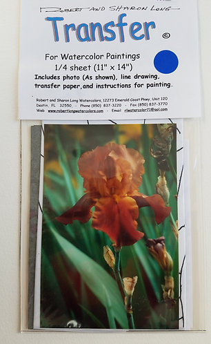 Painting Instruction Kit-Iris Flower #24 Env 52