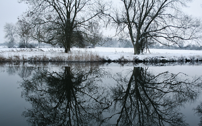 Snowy-Stream